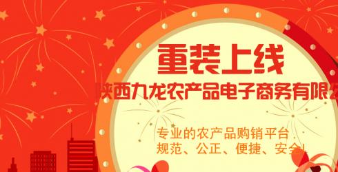陕西九龙农产品交易市场全面介绍
